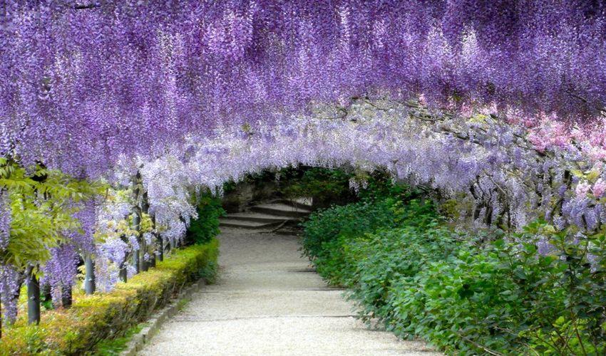 Giardino Bardini - Enchanted Bardini Gardens