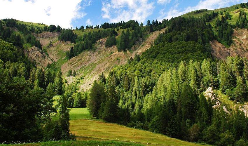 Regional Natural Park of the Friulian Dolomites