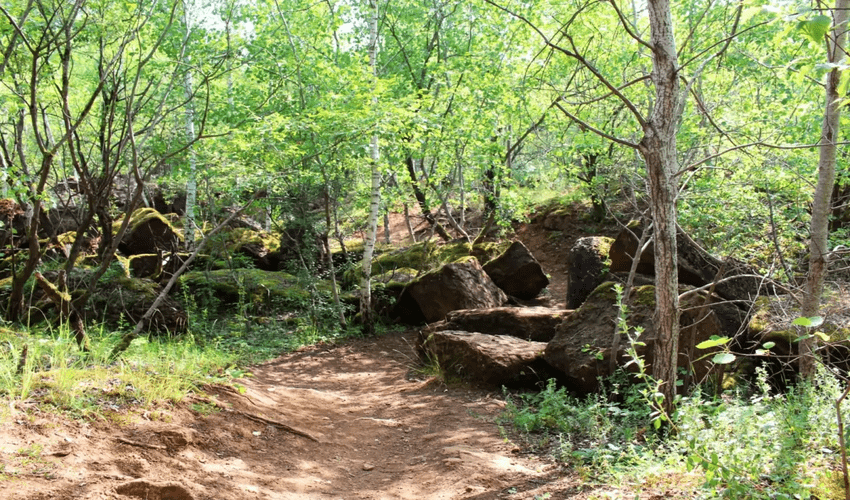 Nature Reserve Haard - Hesselsbierg - Staebierg