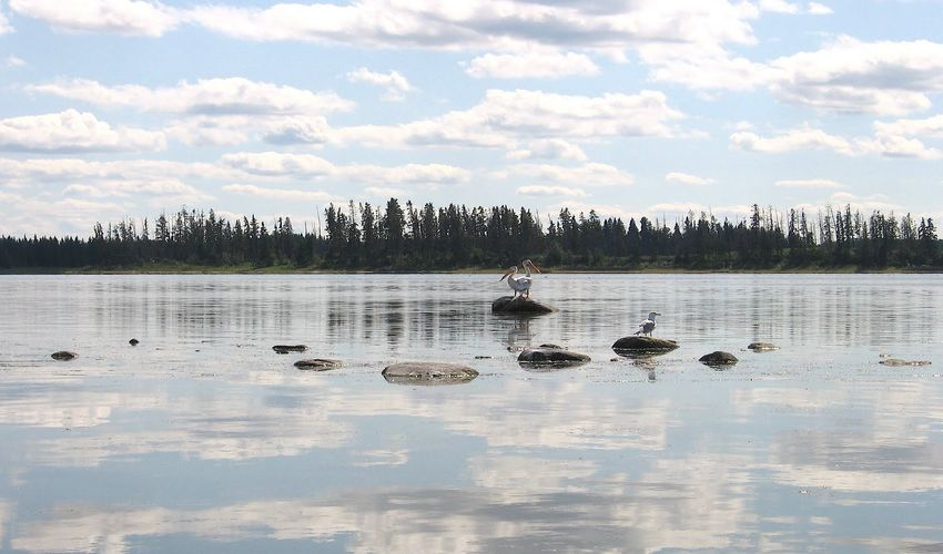 Astotin Lake, Alberta