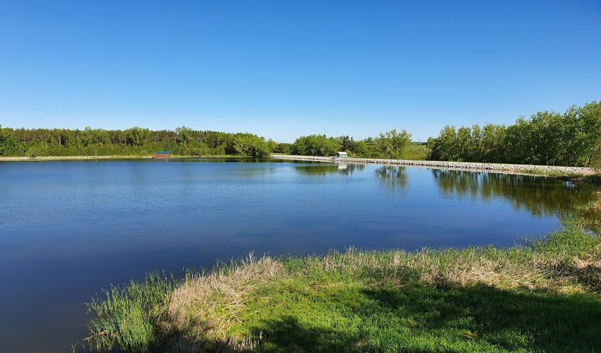 Luther Marsh Wildlife Reserve